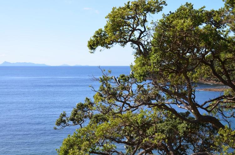 gaot-island-3