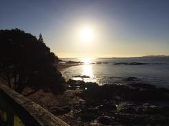 sunset-handybild