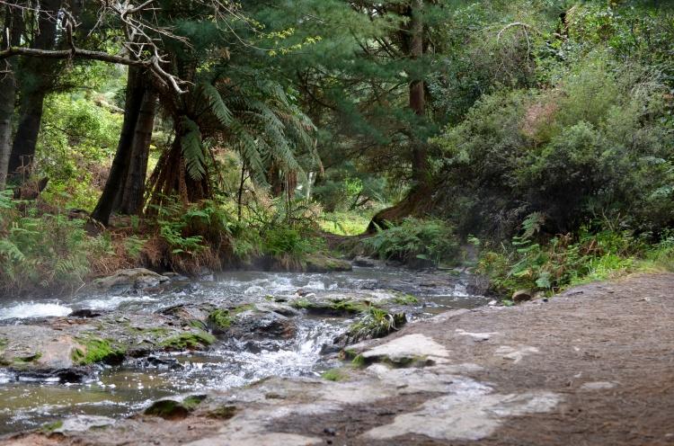 keroserne-creek-2