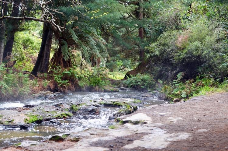 keserne-creek-2