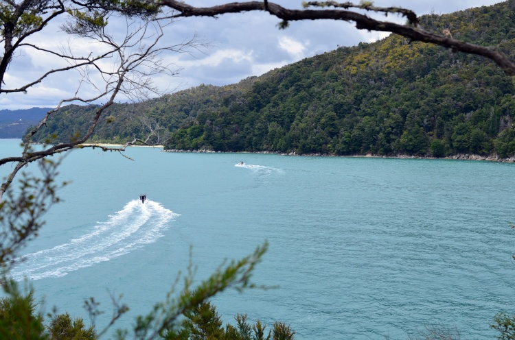 Abel Tasman 6.jpg