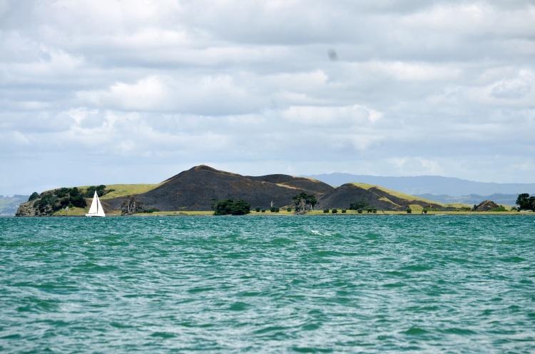 brown-island