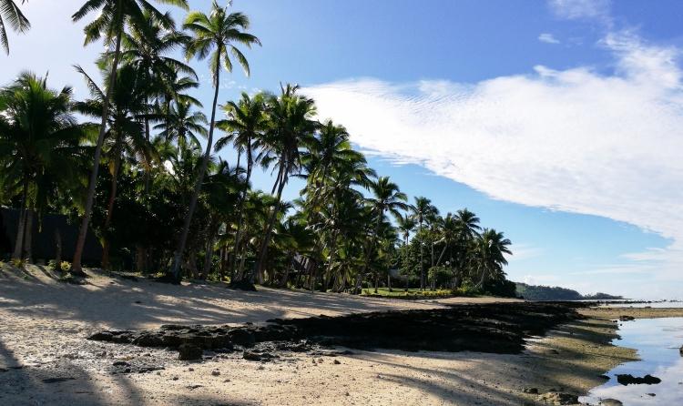 Fiji 8