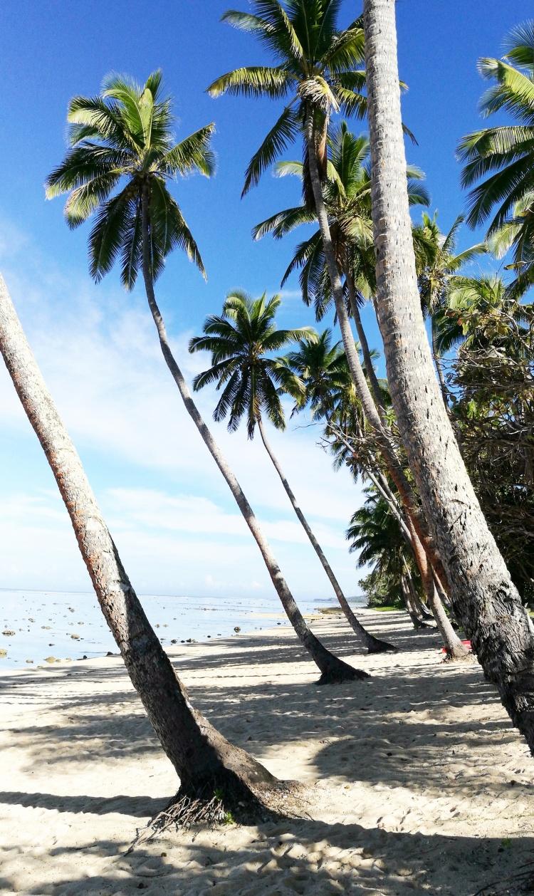 Fiji 9